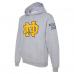 NDHS Class Hoodie